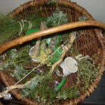 Kräuterkorb